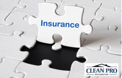 Insurance Guidance Consultation